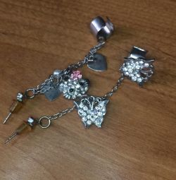 Cercei bijuterii