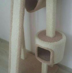 Cat lodge ile karmaşık tırmalamak