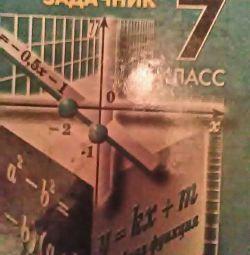 Algebra 7th grade (problem book)