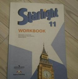 Starlight workbook grade 11