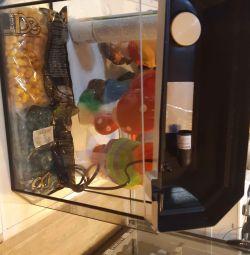 Aquarium 15l + soil