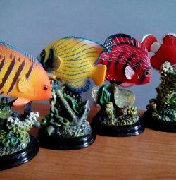 Συλλογή αναμνηστικών θαλάσσιων ψαριών