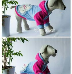Blouse Sweetie for pet