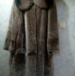 Muton's coat
