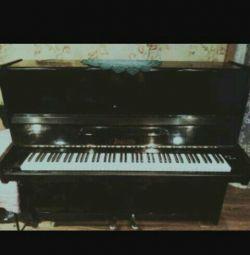 Pianoforte Piano