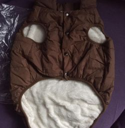 Warm dog jacket for new!