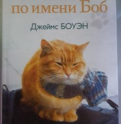Cat named bob book