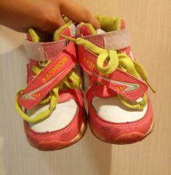 Sneakers 26r