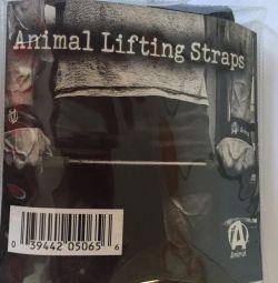 Animal lifting straps