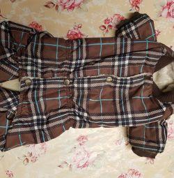 Köpek giysileri