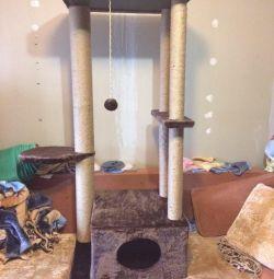 Kediler için yeni bir kompleks