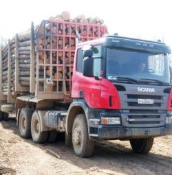 The bulldozer driver