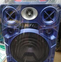? Karaoke Bluetooth column.