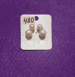 Σκουλαρίκια μαργαριταριών