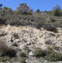 Șase câmpuri în Moniatis, Limassol