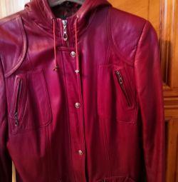 Jacket σελ. 48-50
