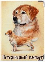 Bir köpeğin veteriner pasaportu için kapaklar