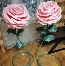 Trandafiri mari de creștere