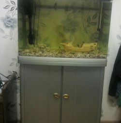 Aquarium with a curbstone
