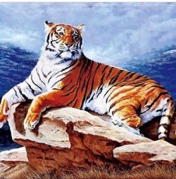 New picture tiger