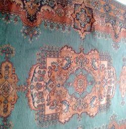 Carpet 2 to 3 is urgent!