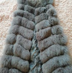 Vesta vulpea arctică finlandeză
