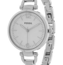 curea fosil es3083