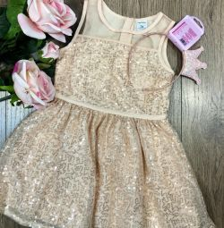 Carter's 3t dress sale or rental (rental)