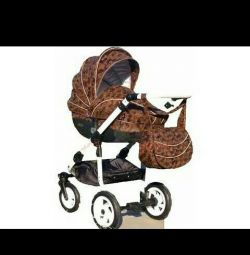 Stroller Universal carriage Androx Milano 3 in 1