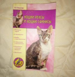 Rex γάτες και σφίγγες