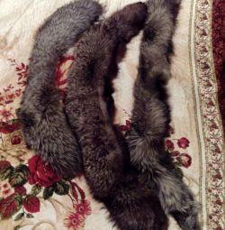 Κολάρες αλεπού