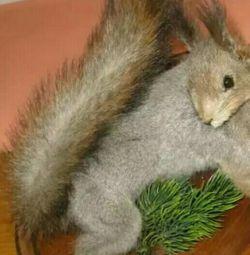 Scarecrow squirrel