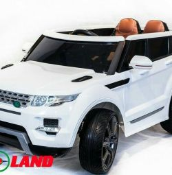 Electric Range Rover 0903