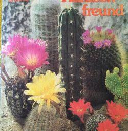 Cartea Cactus