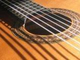 Akustik gitar için gümüş teller