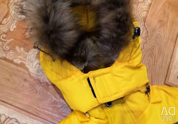 Χειμερινή φορεσιά