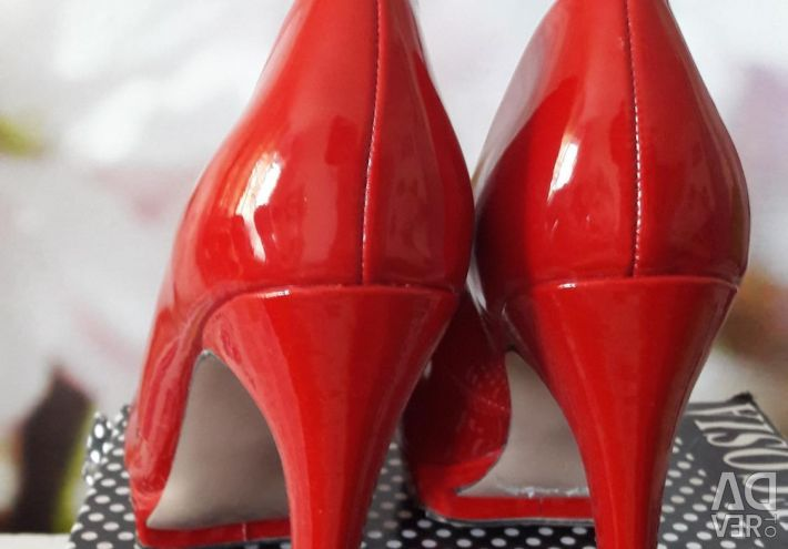 Shoes varnish r-39