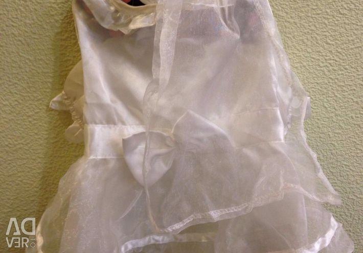 Wedding dress for a dog
