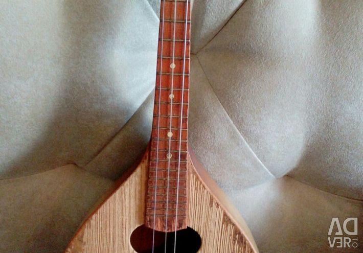 Mandolin and domra