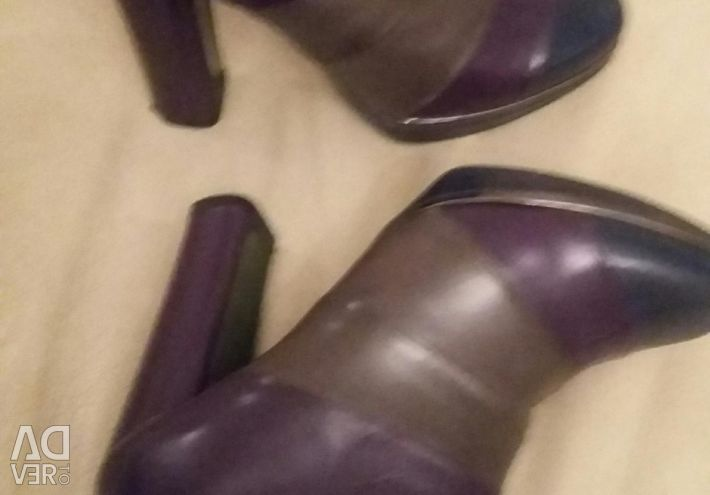 Boots Carlo pazolini, ankle boots aquamarine