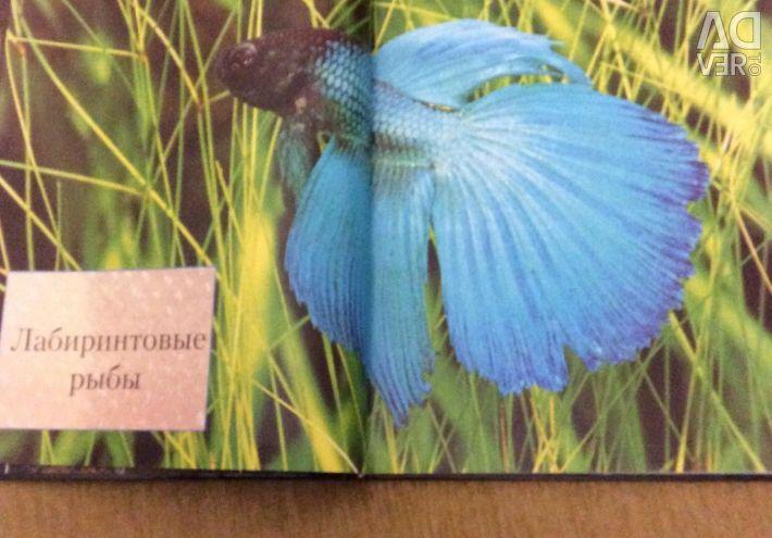 Βιβλίο ψαριών ενυδρείων 1000 φωτογραφίες