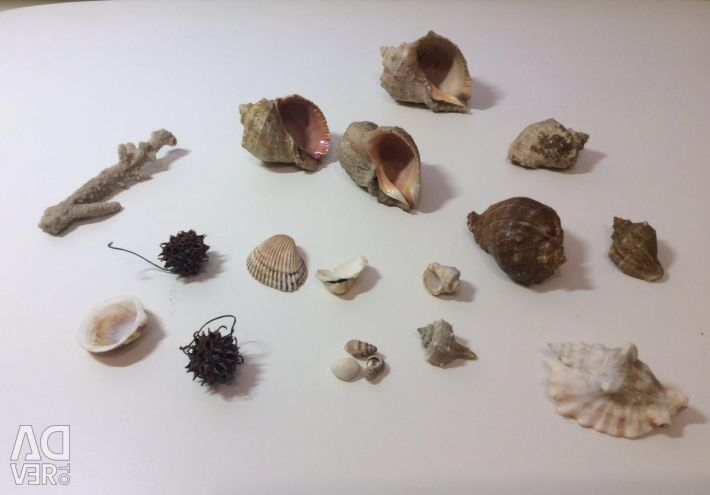 Дары моря-набор 16 предметов