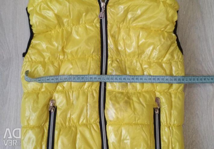 Demi-season vest