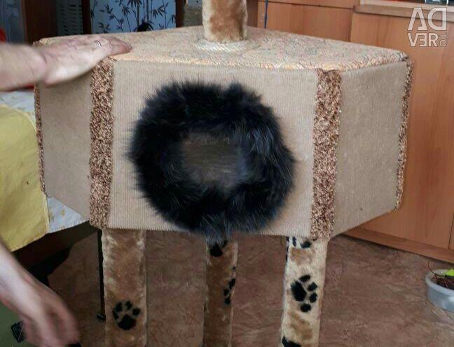 Cat's house.