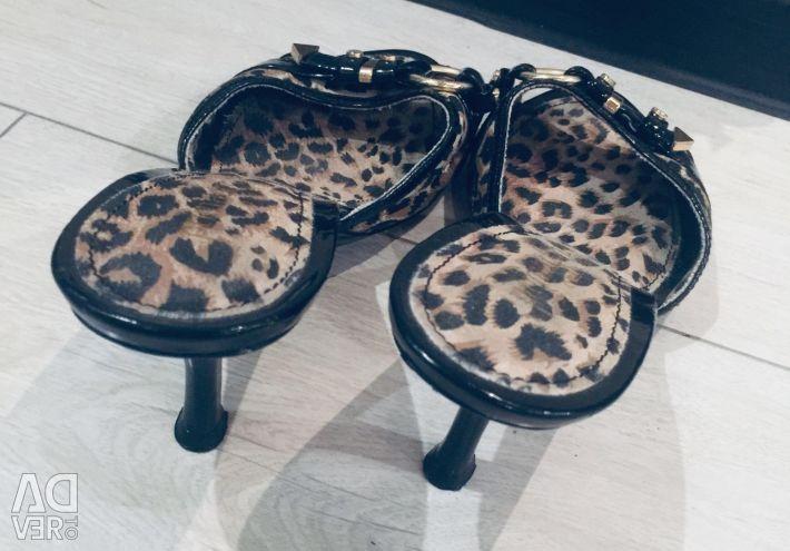 Women's shoes primadonna