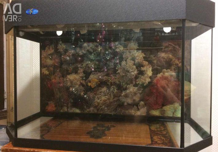 Aquarium Biodesign Shelf 140 l