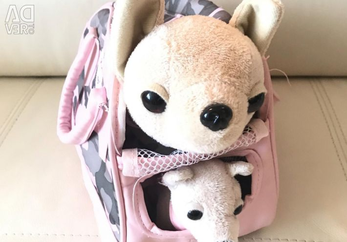 Chihuahua doggy in purse and puppy