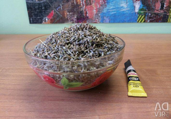 Dry lavender flowers