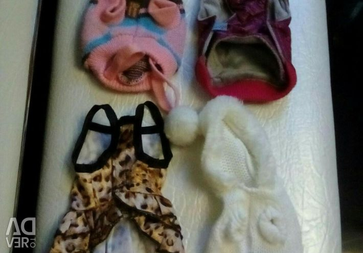 Clothing for dogs S (PACK)