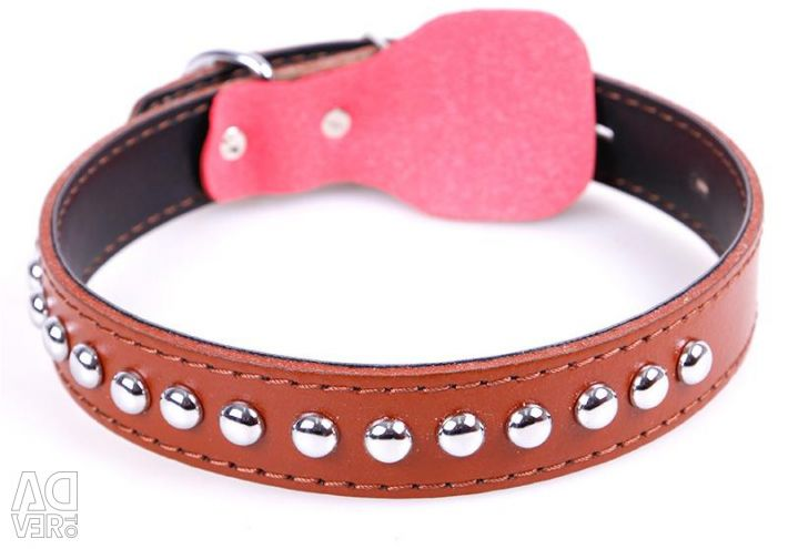 Dog collar 2 colors (size S, M)